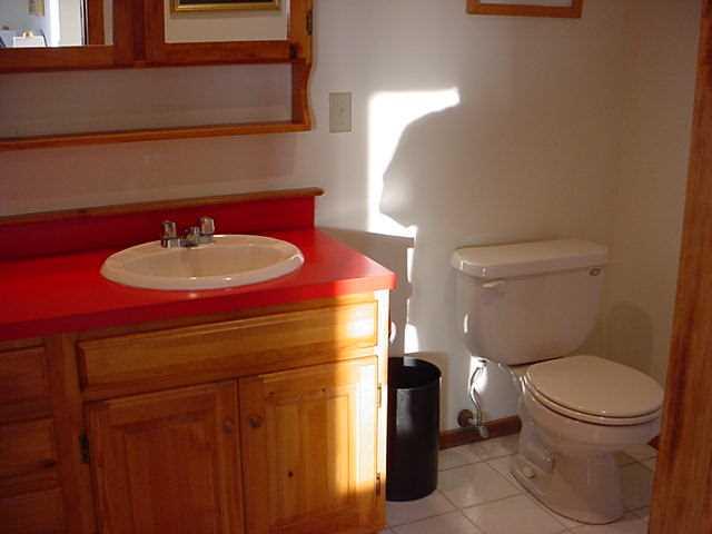 Bathroom- Master