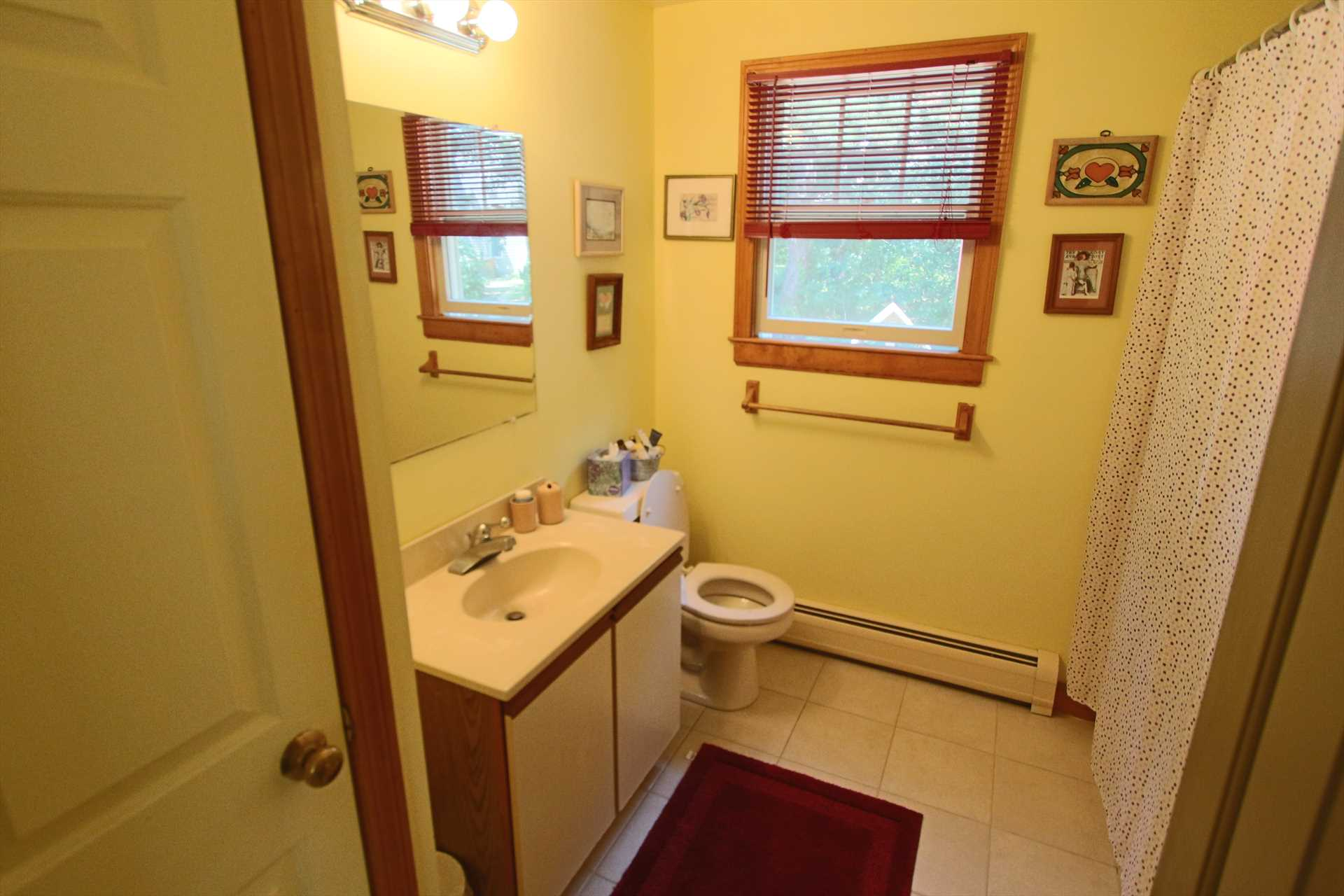 1st Floor bath with Shower and Tub