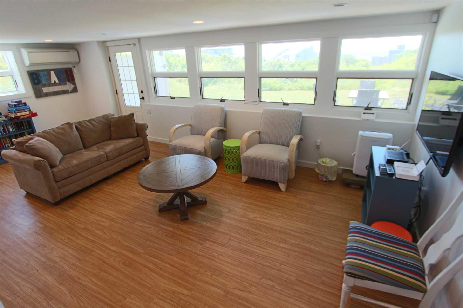 Lower Level Living Room